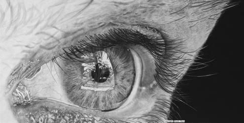 Hyperrealism. Reflectiveness