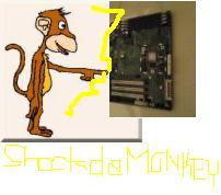 Shock Da Monkey by agoodcupoftea