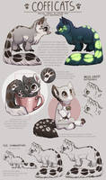 Cofficats - species sheet