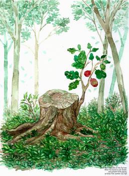 watercolor 14
