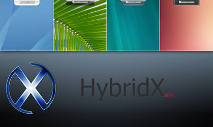 HybridX