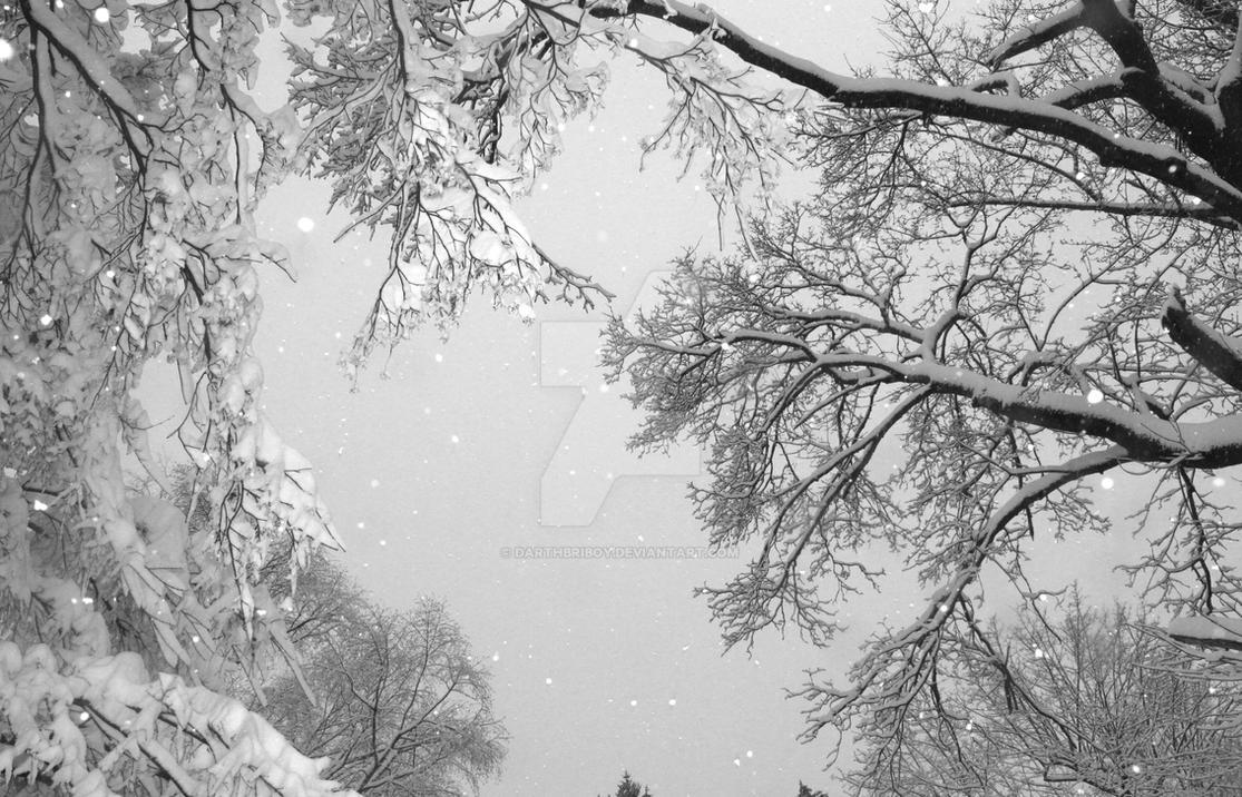 The Graceful Snowfall by darthbriboy