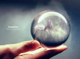Dolphins by Pantoja