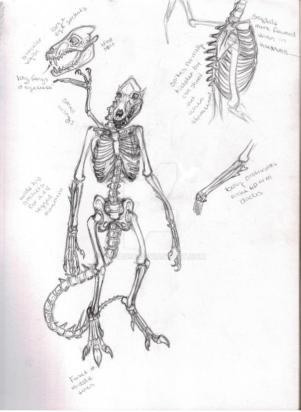 Anatomy practice by Xunau66