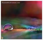 Rainbow II