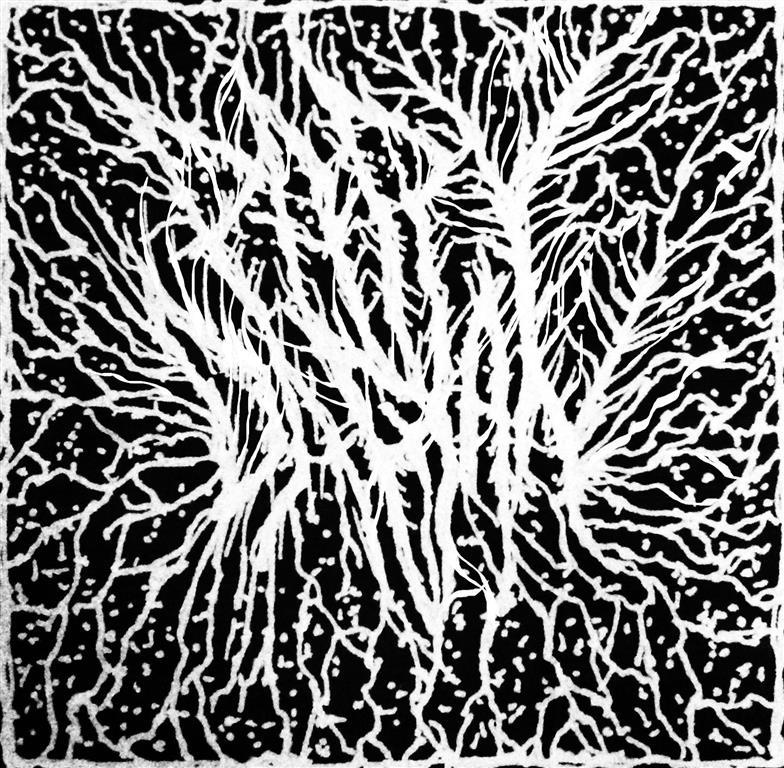 pary-blackmetal by pary