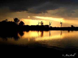 Australia, Billabong (Kakadu NP) by Mithrandiir