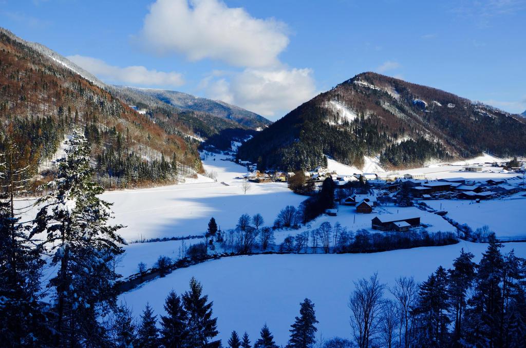 winterwalk by Mithrandiir
