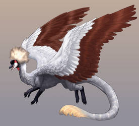 Half-price Dragon Adopt-Grey Crowned Crane|CLOSED by dragonofdivinewind