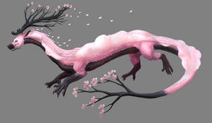 Dragon Adopt-Sakura|CLOSED