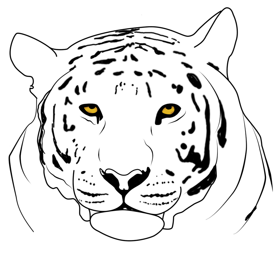 White Tiger Line Art Tiger Line Art by Miracleheart