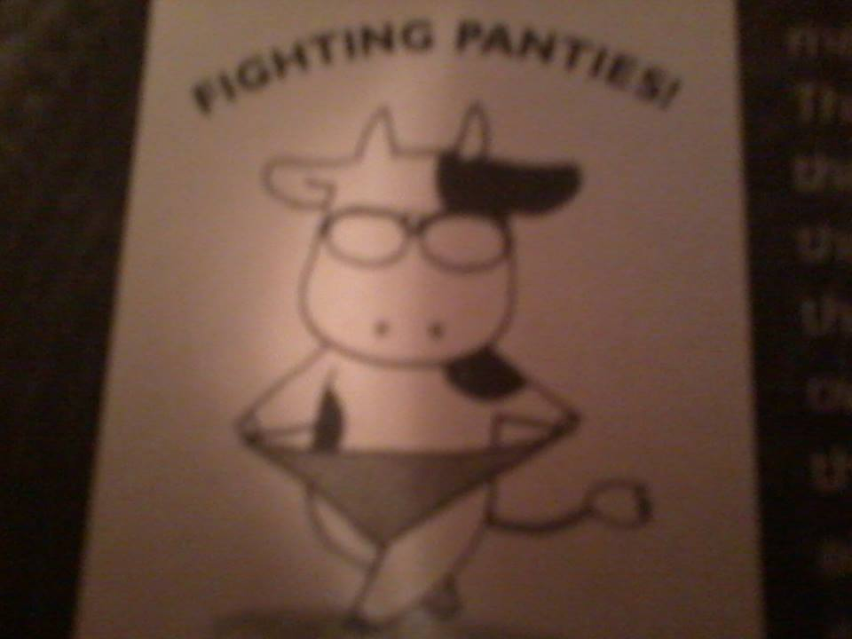 Fighting Panties by OtakuGirl14