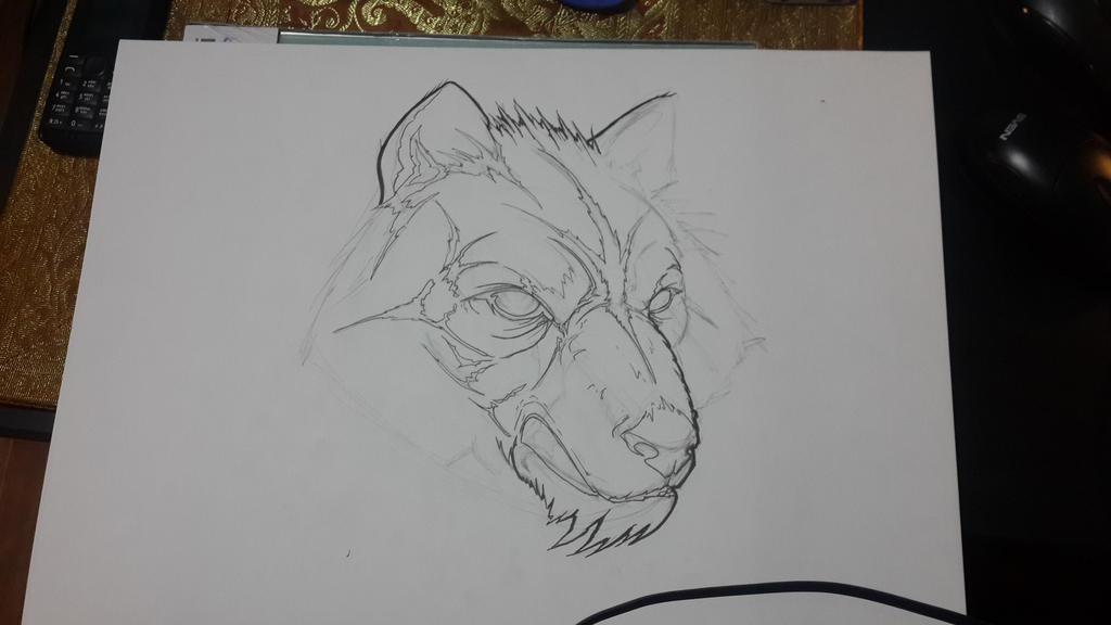 Wolf in progress by TimHag