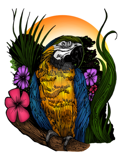 Tropical Parrot by Adamzworld
