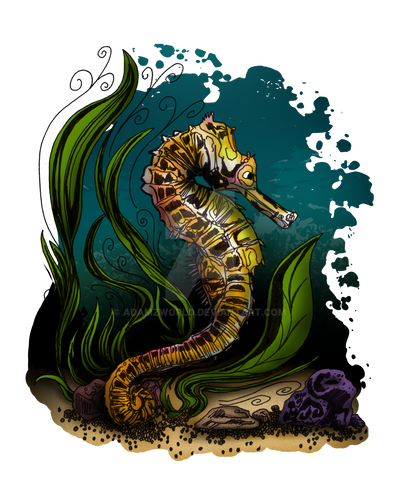 Seahorse by Adamzworld