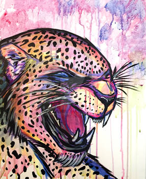 Leopard Scream