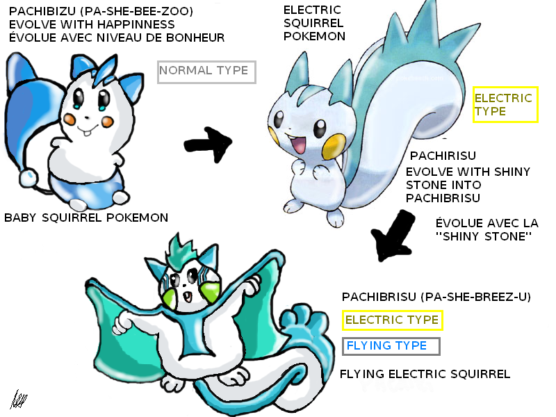 EVOLUTIONS OF PACHIRISU by aquamic on DeviantArt