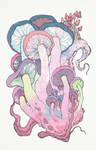 Cephalopoda Amanita