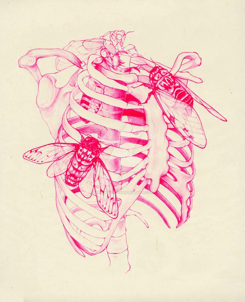 cicada cage (pink)