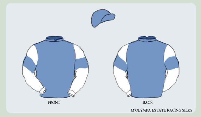 M 39 olympa jockey silks by foxtrot98 on deviantart for Jockey silks template