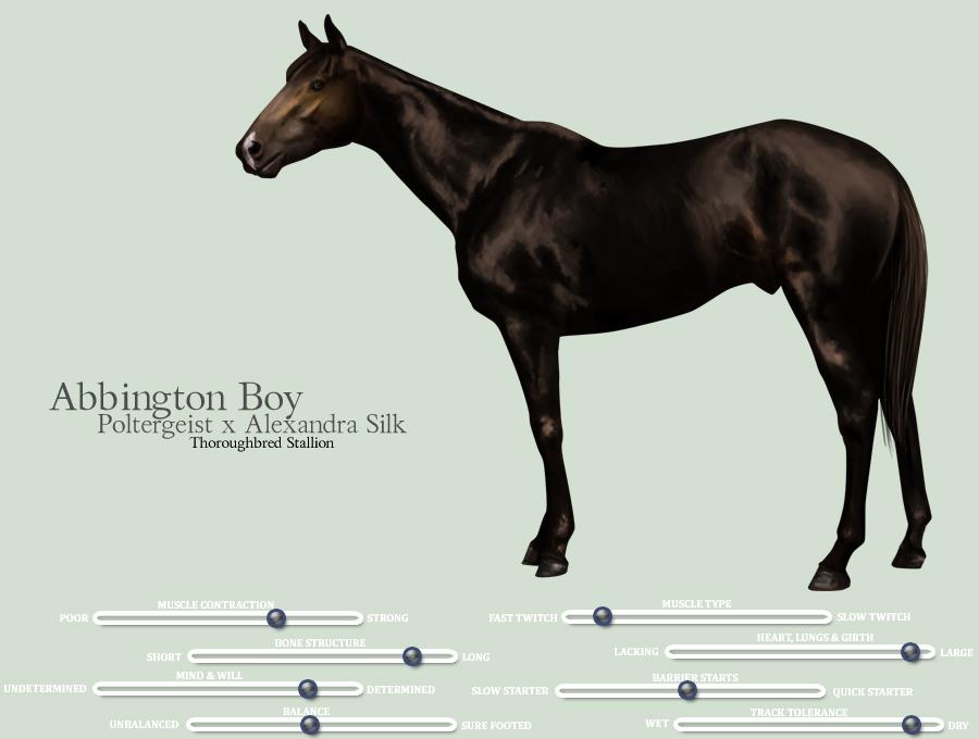 M'O Abbington Boy by foxtrot98