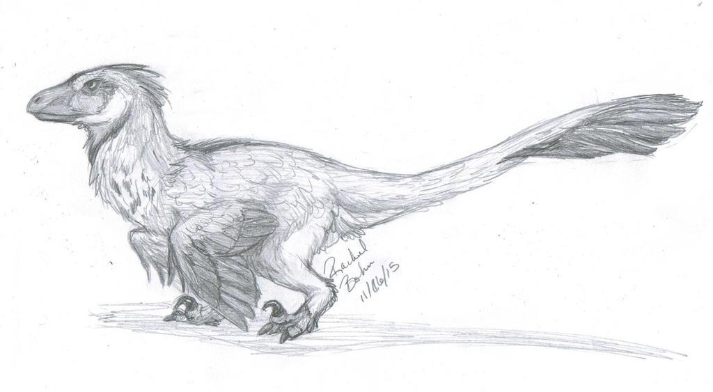 Dakotaraptor by Rae-elic