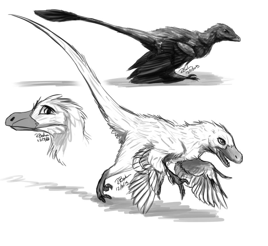 Dromaeosaurs by Rae-elic