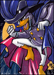 PSC - Darkwing Duck by aimo