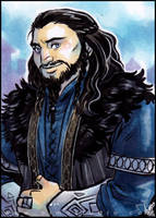 PSC - Young Prince Thorin by aimo