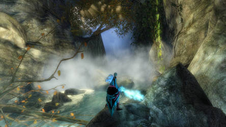 Random Guild Wars 2 Screenshot by WannaFantaMan