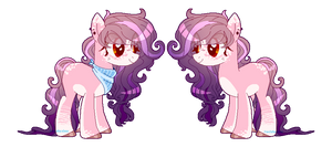 Pony Adopt Auction | CLOSED