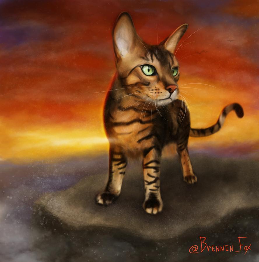 King by Brennen-Fox