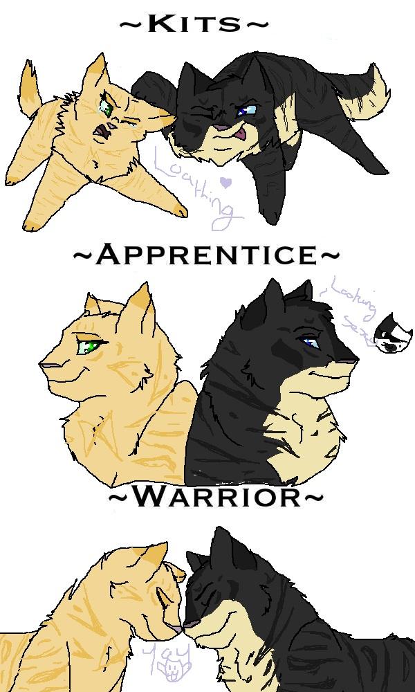 Warrior Cats My Love Story
