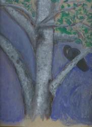 Savage Birch study. by Moonstruck-Madd