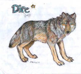 Dire Wolf Study by Moonstruck-Madd