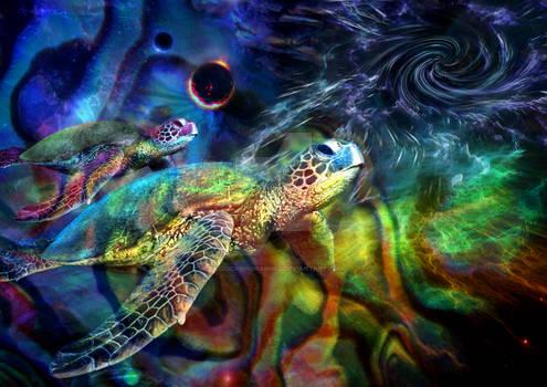 Turtle Space Odyssye V2.