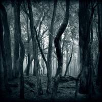 Lost Within by McKenzie-James