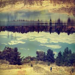 Linger by McKenzie-James