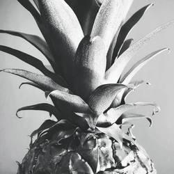 Silver Pineapple by McKenzie-James
