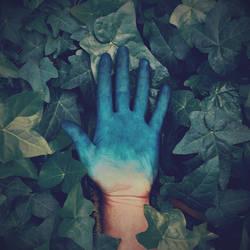 Blue Ivy by McKenzie-James