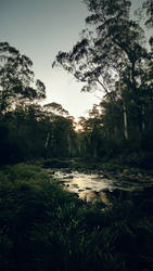 Howqua by McKenzie-James
