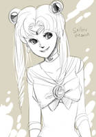 Sailor moon by koenta