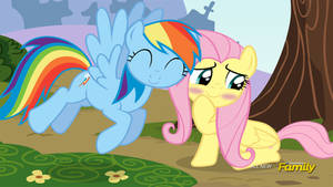 Flutter Dash -- Incoming Nuzzle! ||REQUEST||