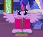 Silly Book Pone