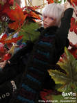 Autumn Wandering by novemberkris