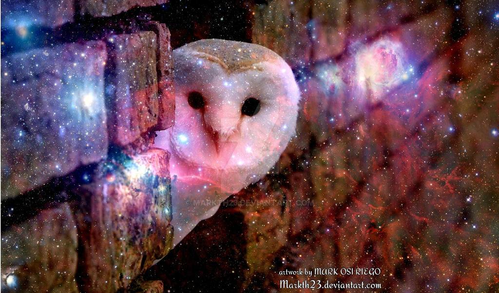 galaxy barn owl wallpaper by markth23 d6t1c9m