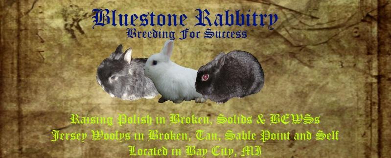 Rabbitry Banners