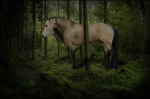 Nostalgia by Bouncey-horse