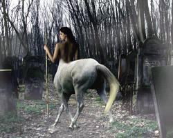 Graveyard Centaur by chaelomen