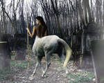Graveyard Centaur